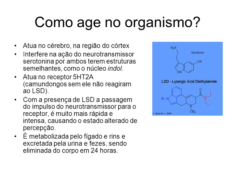 Como age no organismo Atua no cérebro, na região do córtex