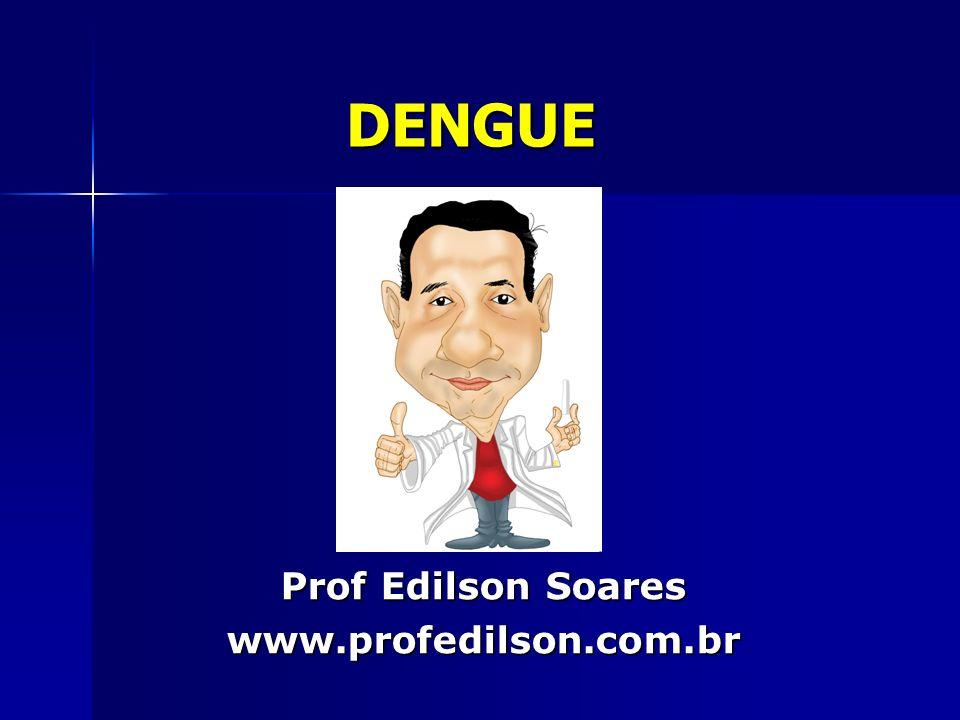DENGUE Prof Edilson Soares www.profedilson.com.br