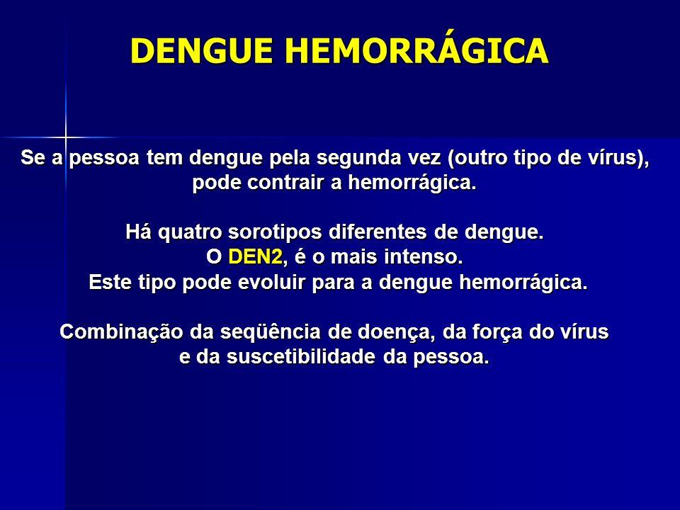 DENGUE HEMORRÁGICA Se a pessoa tem dengue pela segunda vez (outro tipo de vírus), pode contrair a hemorrágica.