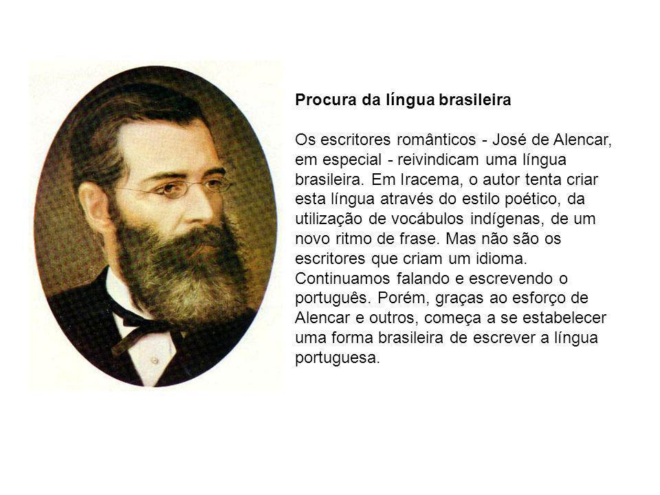 Procura da língua brasileira