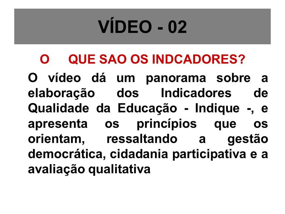 VÍDEO - 02 O QUE SAO OS INDCADORES