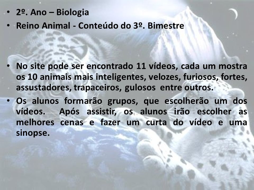 2º. Ano – Biologia Reino Animal - Conteúdo do 3º. Bimestre.