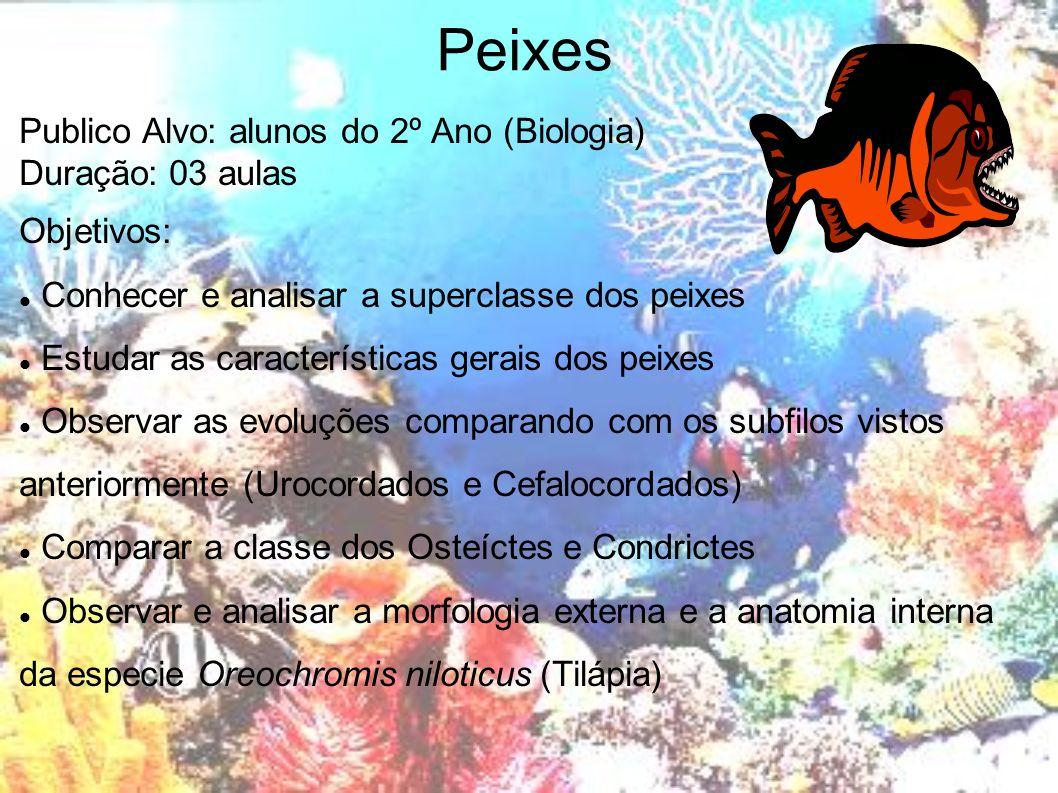 Peixes Publico Alvo: alunos do 2º Ano (Biologia) Duração: 03 aulas