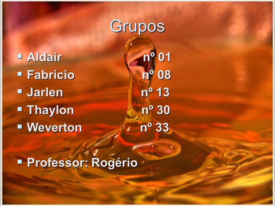 Grupos Aldair nº 01 Fabrício nº 08 Jarlen nº 13 Thaylon nº 30