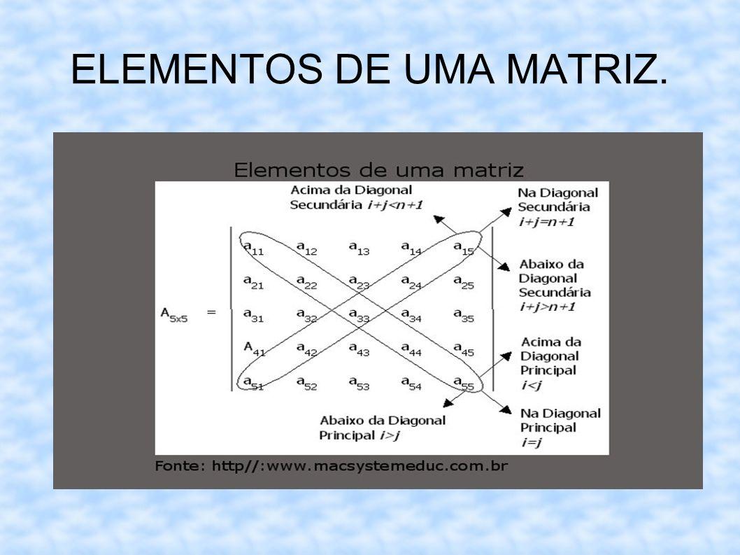 ELEMENTOS DE UMA MATRIZ.