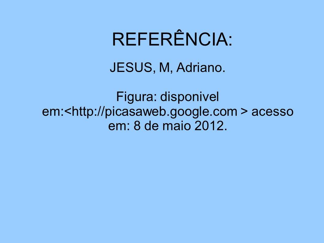 REFERÊNCIA: JESUS, M, Adriano. JESUS. M. Adriano