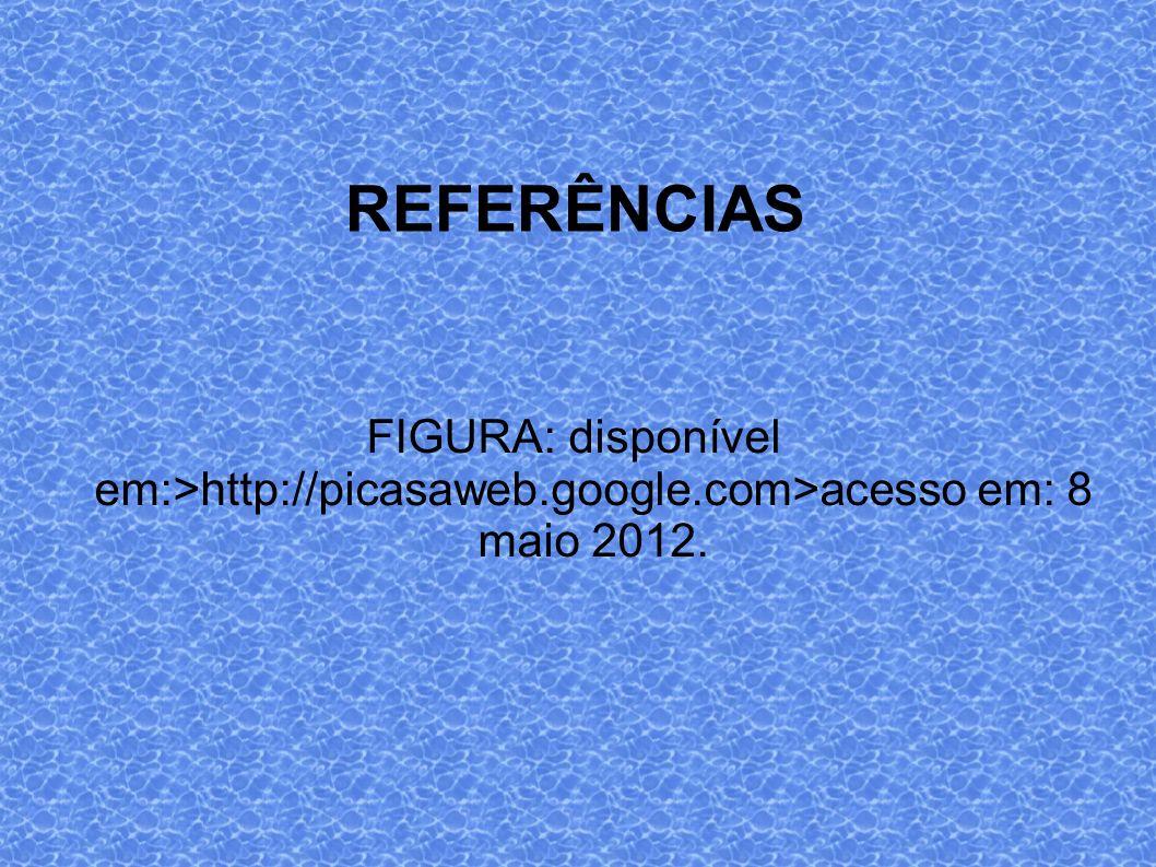 REFERÊNCIAS FIGURA: disponível em:>http://picasaweb.google.com>acesso em: 8 maio 2012.