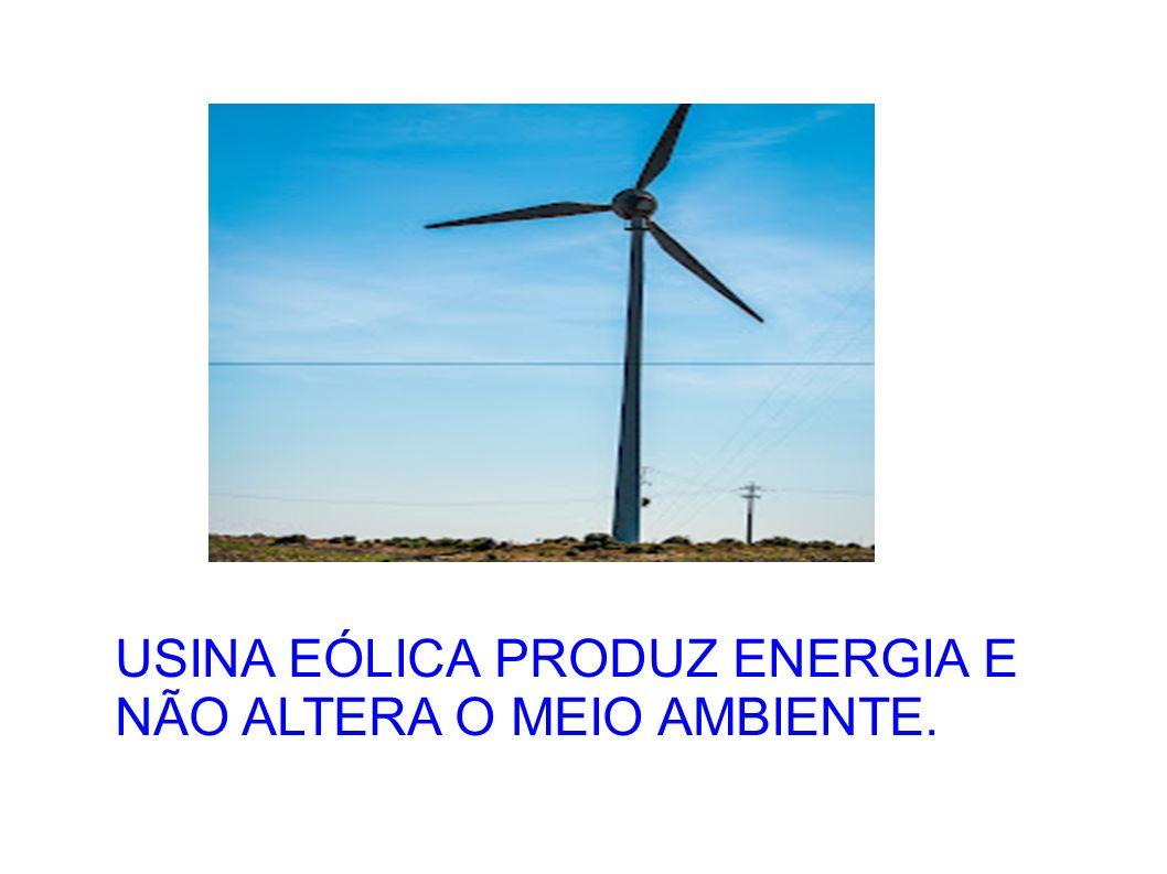 USINA EÓLICA PRODUZ ENERGIA E NÃO ALTERA O MEIO AMBIENTE.
