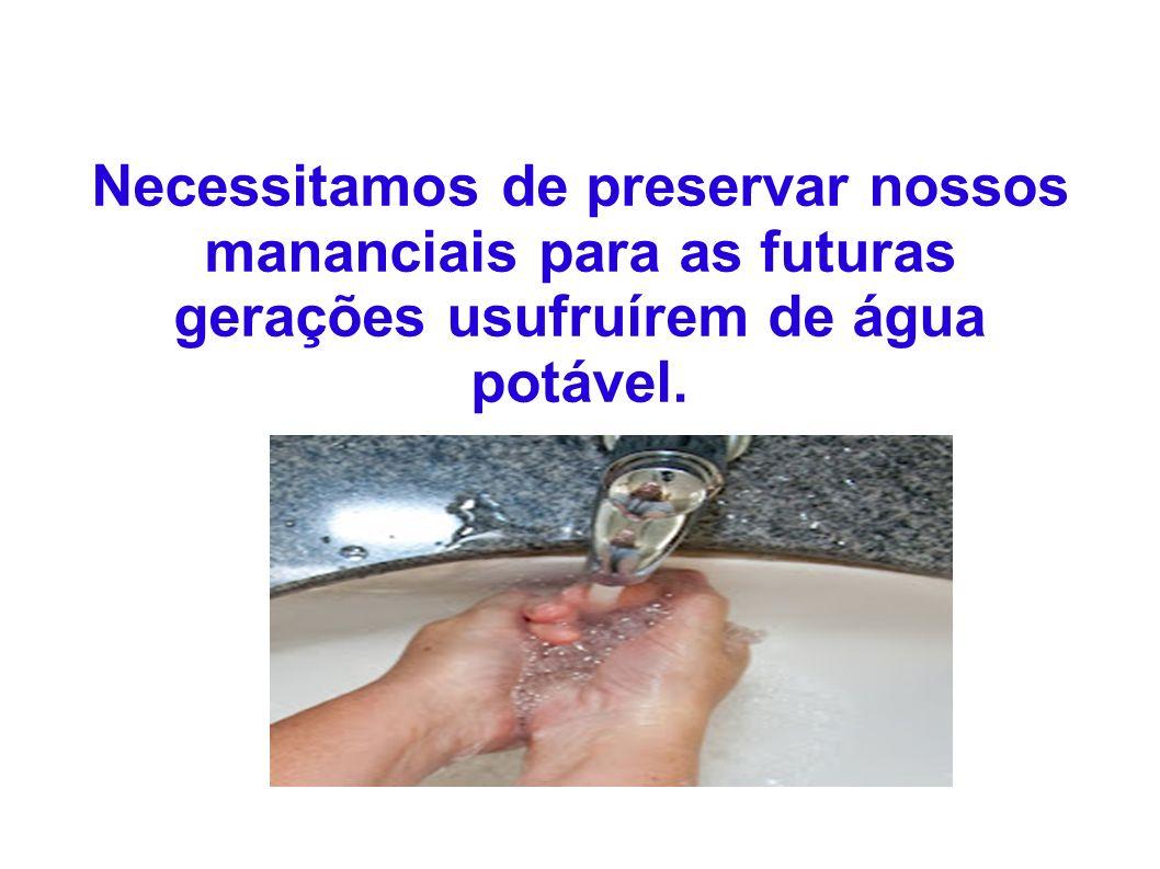 Necessitamos de preservar nossos mananciais para as futuras gerações usufruírem de água potável.
