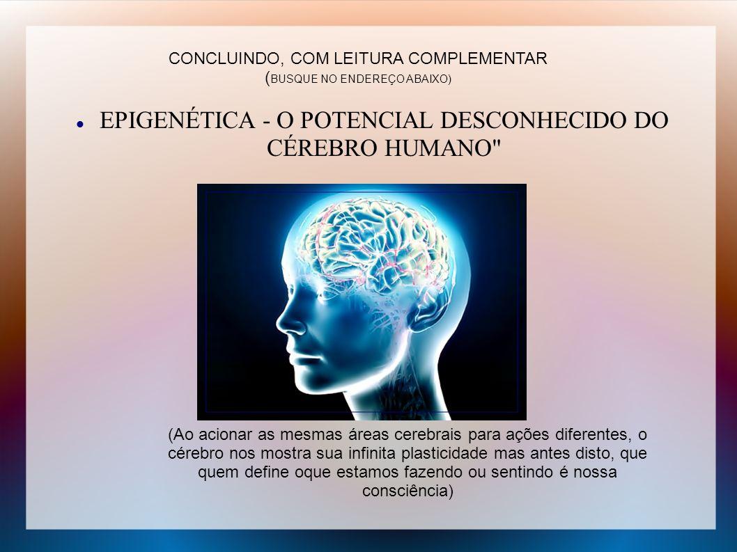 EPIGENÉTICA - O POTENCIAL DESCONHECIDO DO CÉREBRO HUMANO
