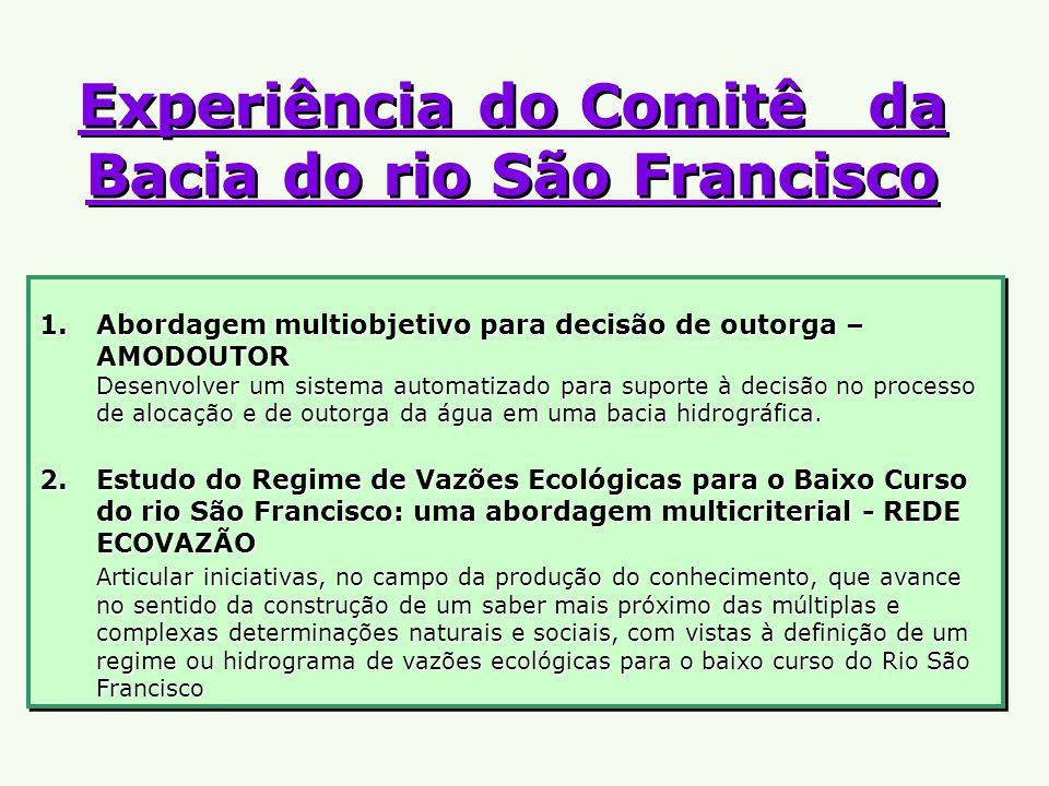 Experiência do Comitê da Bacia do rio São Francisco