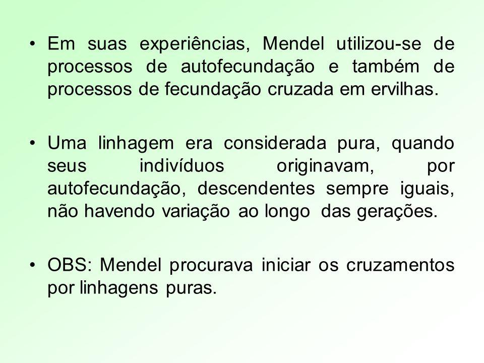 Em suas experiências, Mendel utilizou-se de processos de autofecundação e também de processos de fecundação cruzada em ervilhas.