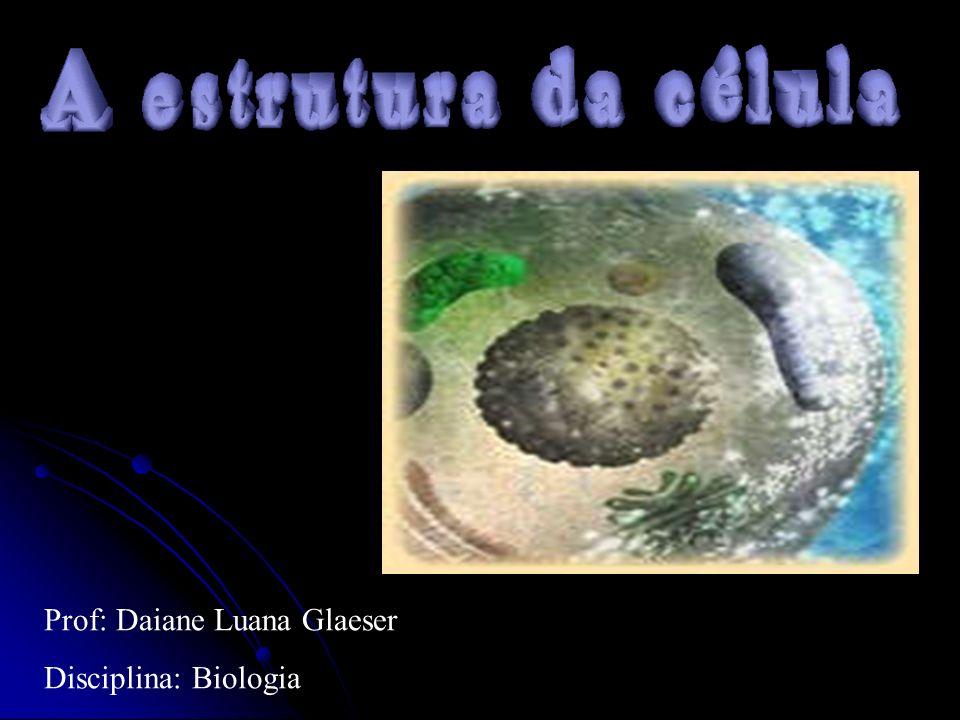 Prof: Daiane Luana Glaeser