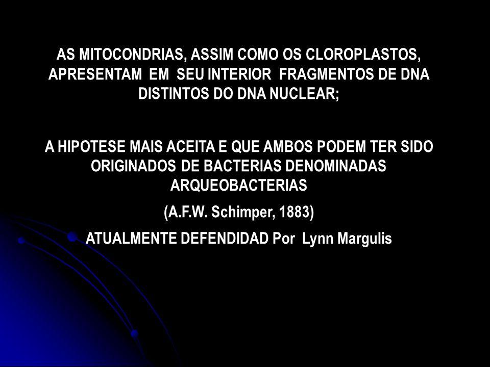 ATUALMENTE DEFENDIDAD Por Lynn Margulis