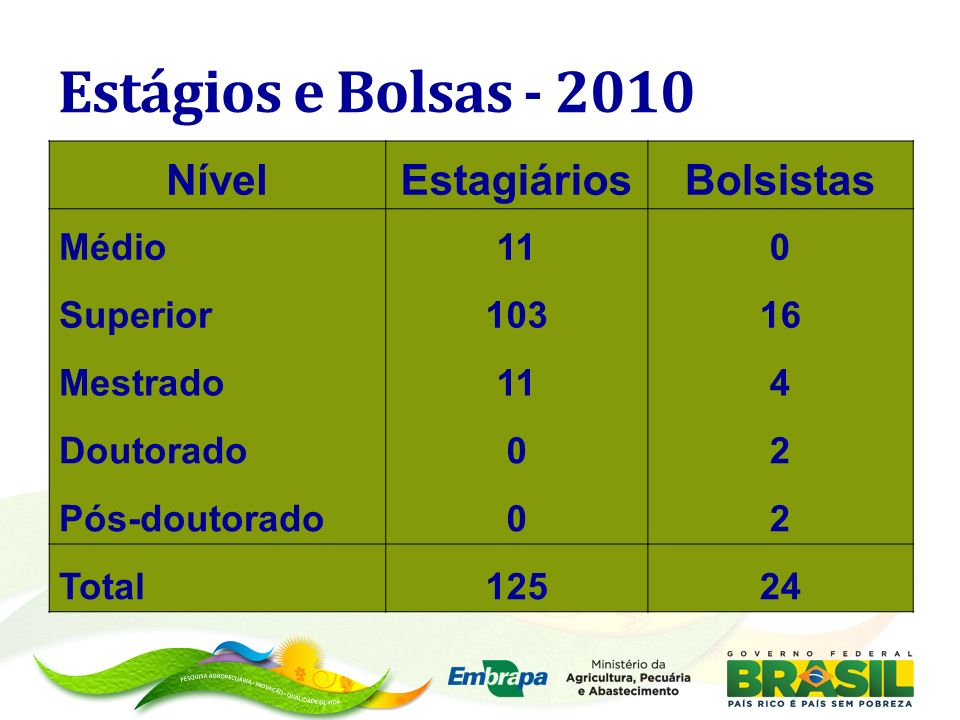 Estágios e Bolsas - 2010 Nível Estagiários Bolsistas Médio 11 Superior