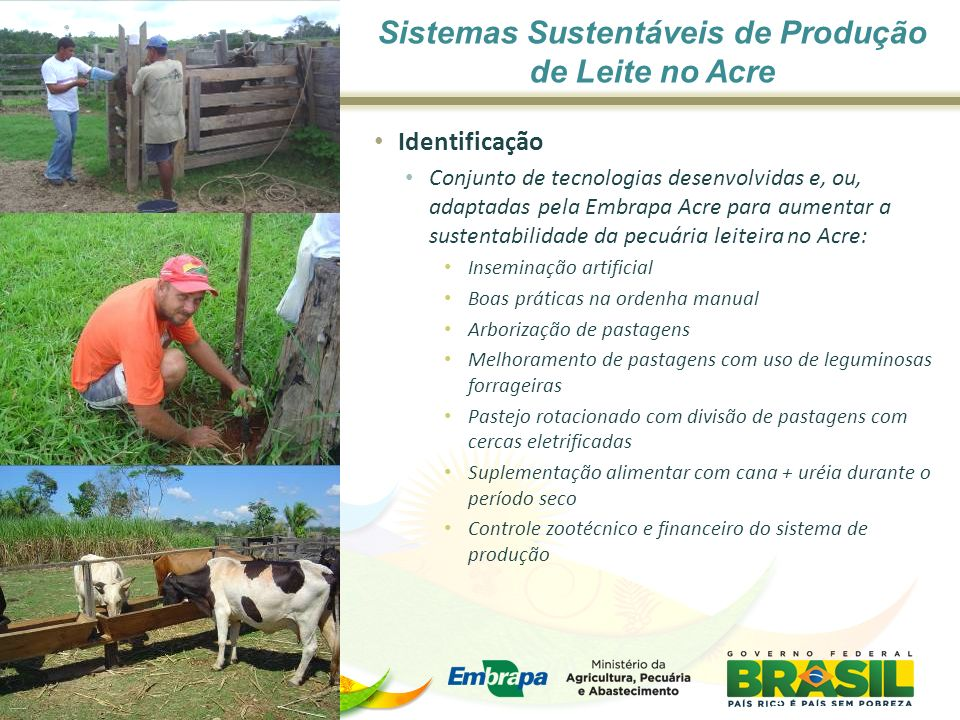 Sistemas Sustentáveis de Produção de Leite no Acre