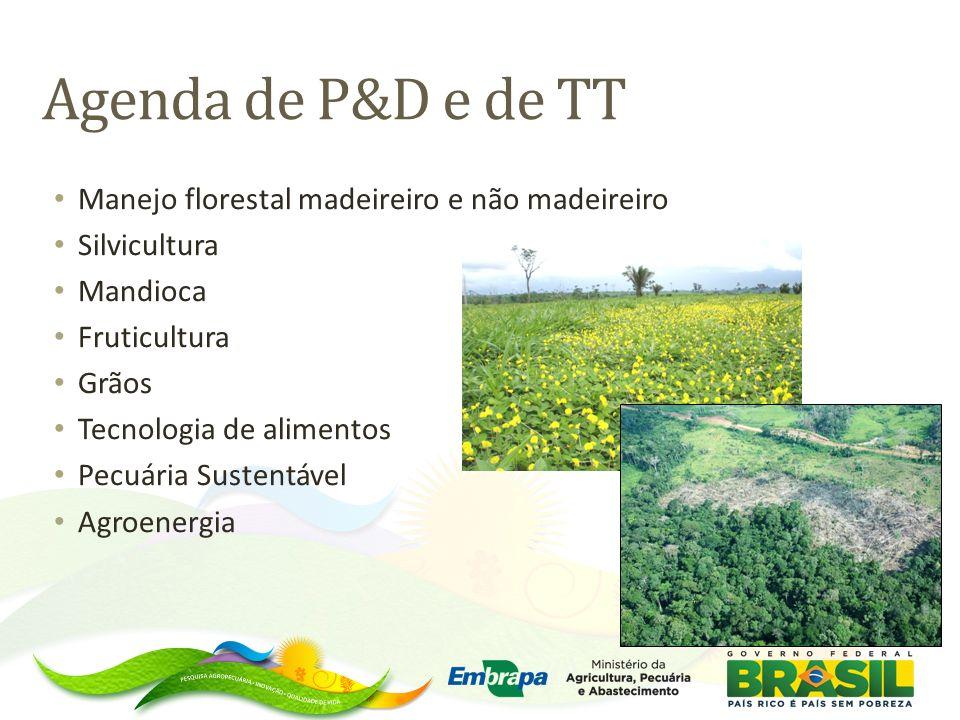 Agenda de P&D e de TT Manejo florestal madeireiro e não madeireiro