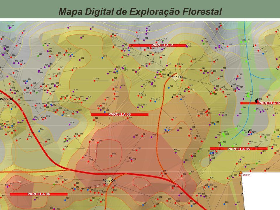 Mapa Digital de Exploração Florestal
