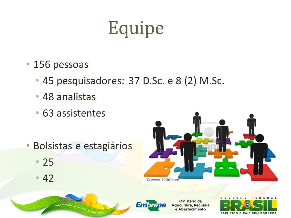 Equipe 156 pessoas 45 pesquisadores: 37 D.Sc. e 8 (2) M.Sc.
