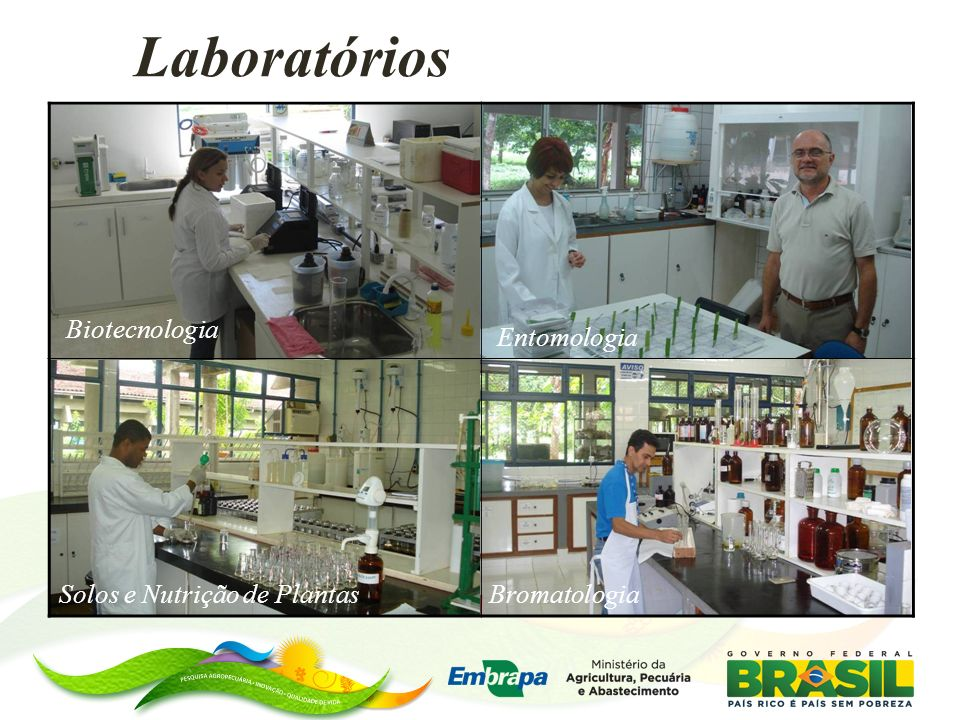 Laboratórios Biotecnologia Entomologia Solos e Nutrição de Plantas