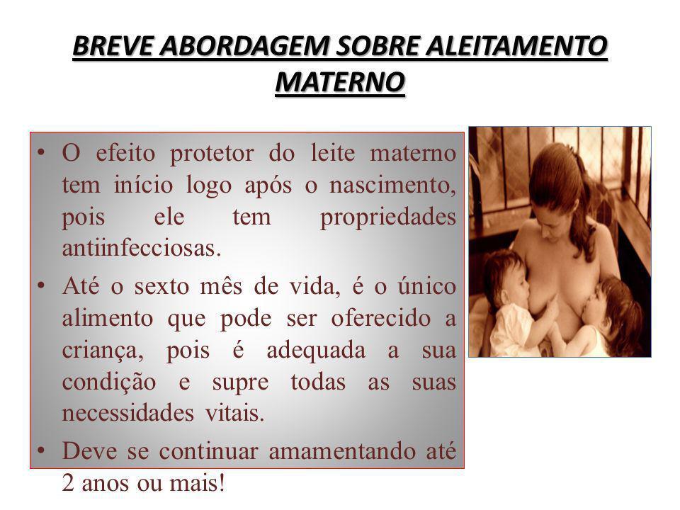 BREVE ABORDAGEM SOBRE ALEITAMENTO MATERNO