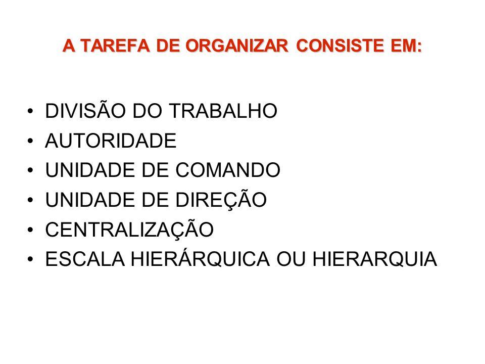 A TAREFA DE ORGANIZAR CONSISTE EM: