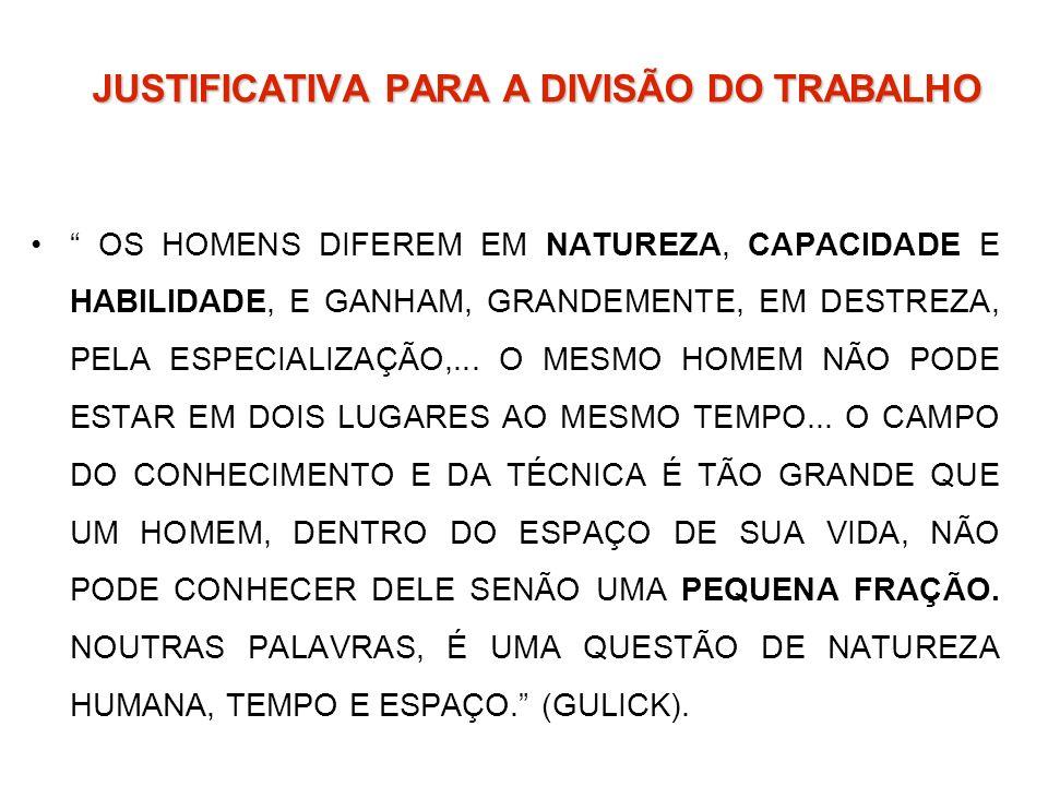JUSTIFICATIVA PARA A DIVISÃO DO TRABALHO