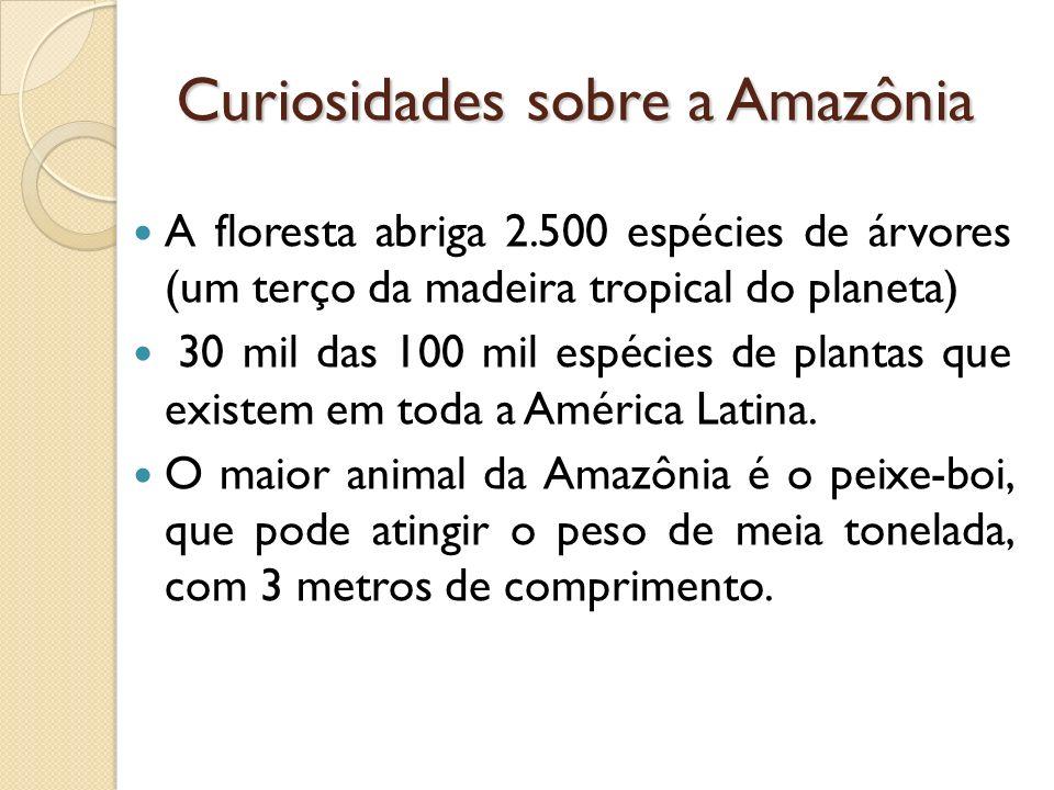 Curiosidades sobre a Amazônia