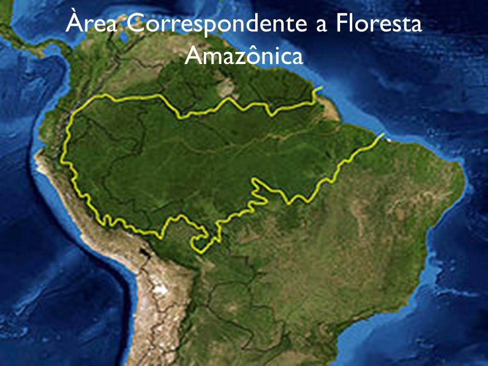 Àrea Correspondente a Floresta Amazônica