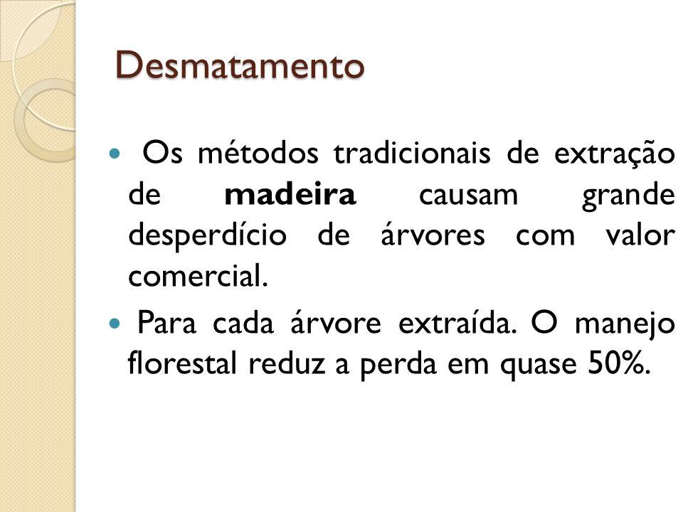 Desmatamento Os métodos tradicionais de extração de madeira causam grande desperdício de árvores com valor comercial.
