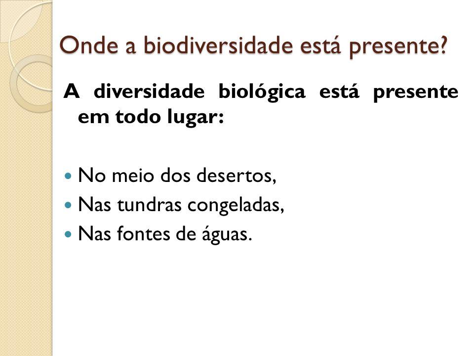 Onde a biodiversidade está presente
