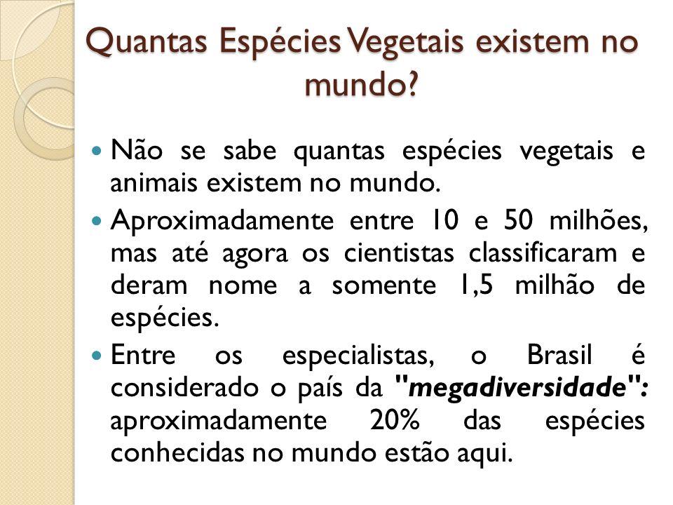Quantas Espécies Vegetais existem no mundo