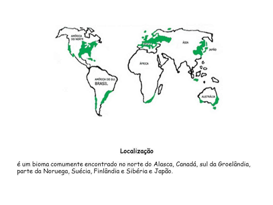 Localização é um bioma comumente encontrado no norte do Alasca, Canadá, sul da Groelândia, parte da Noruega, Suécia, Finlândia e Sibéria e Japão.