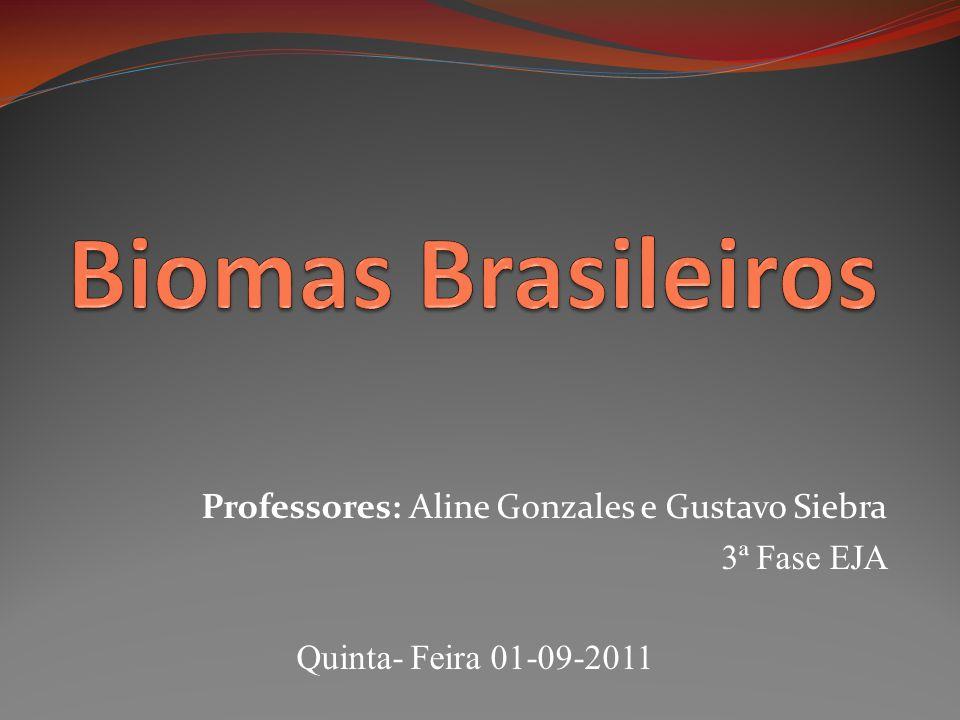 Biomas Brasileiros Professores: Aline Gonzales e Gustavo Siebra