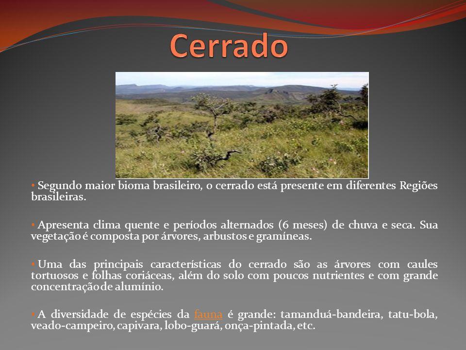 Cerrado Segundo maior bioma brasileiro, o cerrado está presente em diferentes Regiões brasileiras.