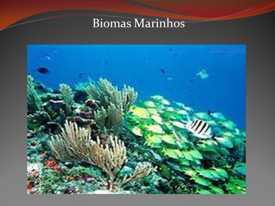 Biomas Marinhos