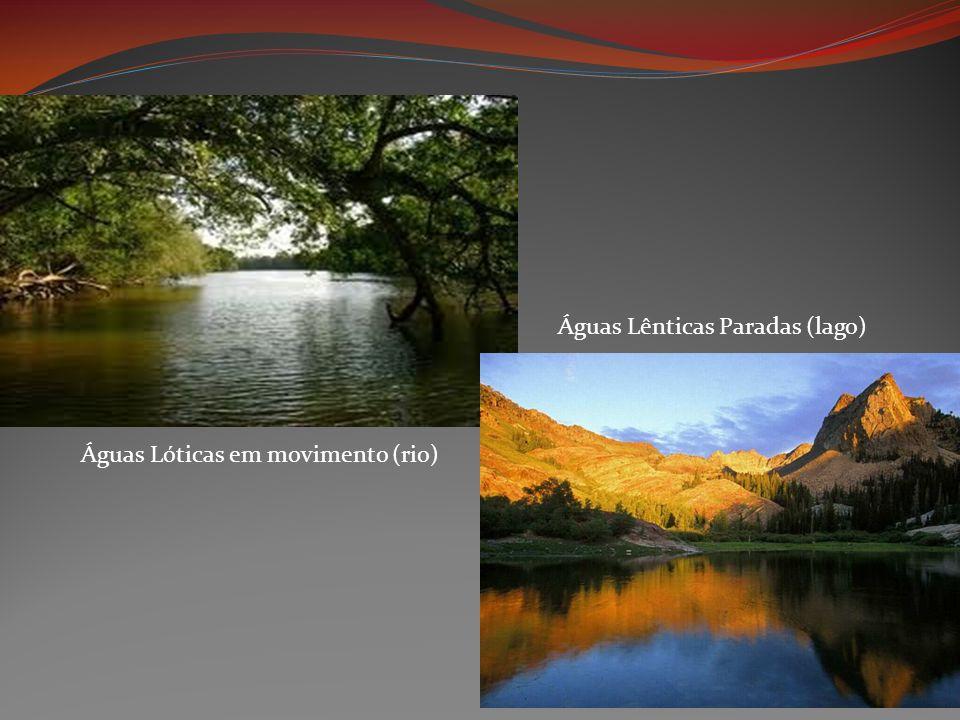 Águas Lênticas Paradas (lago)