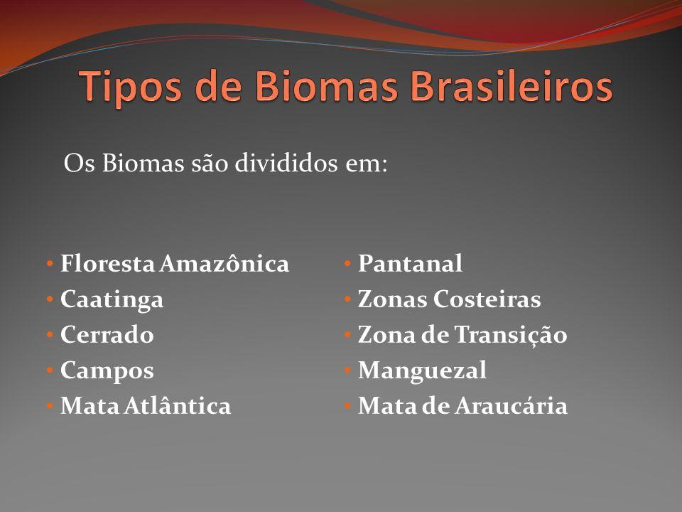 Tipos de Biomas Brasileiros