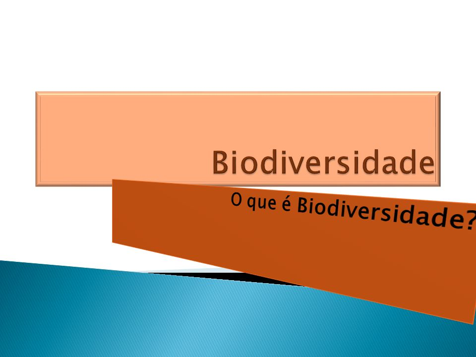 Biodiversidade O que é Biodiversidade