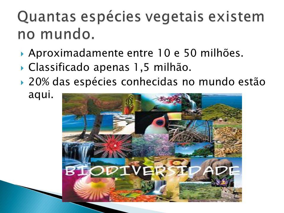 Quantas espécies vegetais existem no mundo.