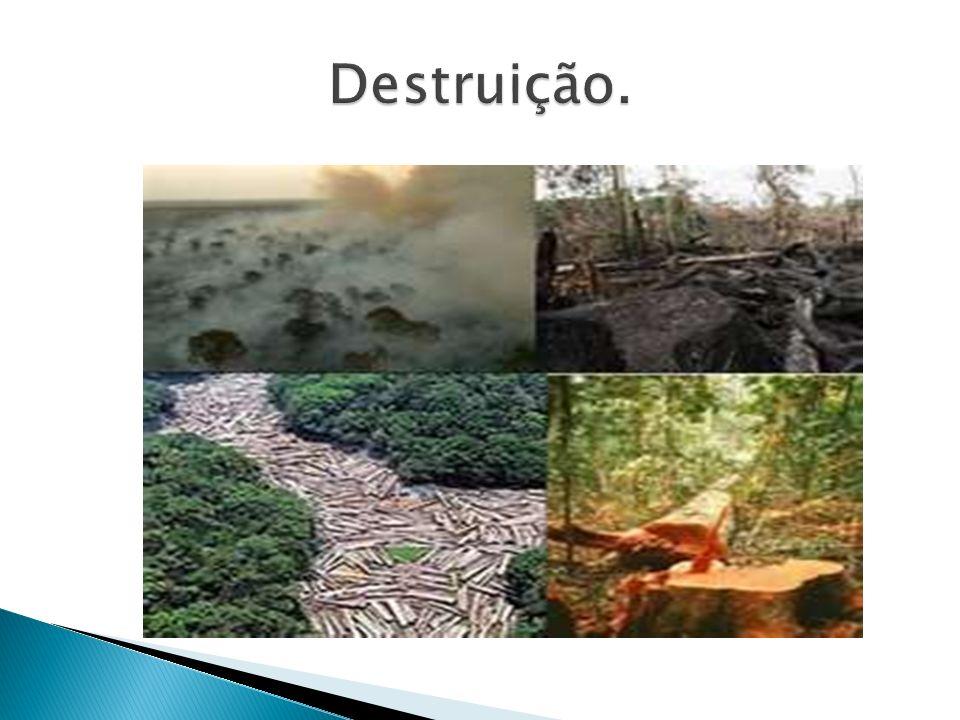 Destruição.