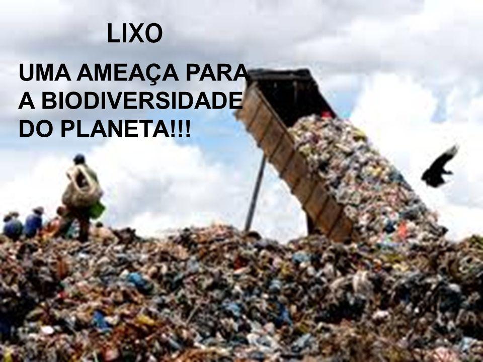 LIXO UMA AMEAÇA PARA A BIODIVERSIDADE DO PLANETA!!!