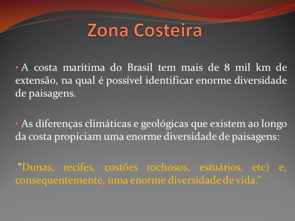 Zona Costeira A costa marítima do Brasil tem mais de 8 mil km de extensão, na qual é possível identificar enorme diversidade de paisagens.