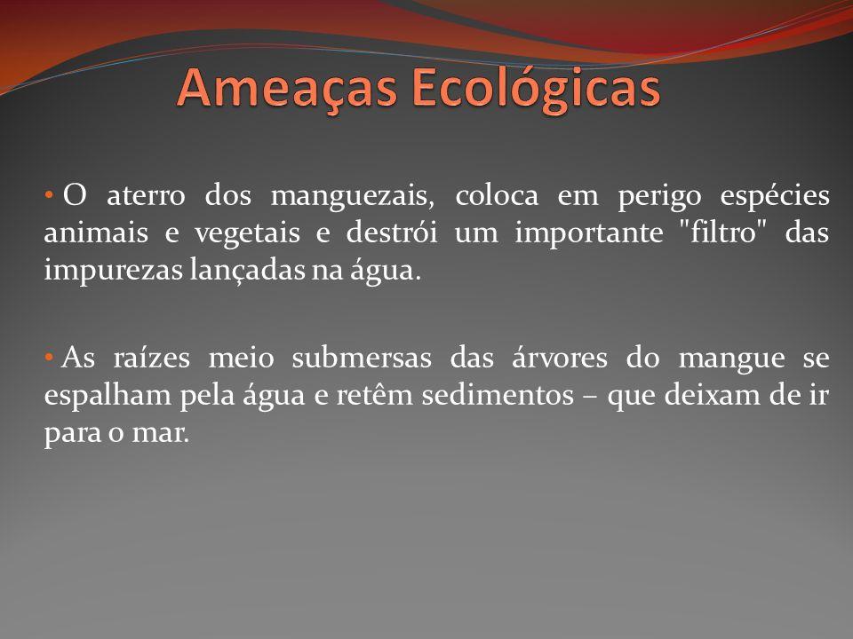 Ameaças Ecológicas
