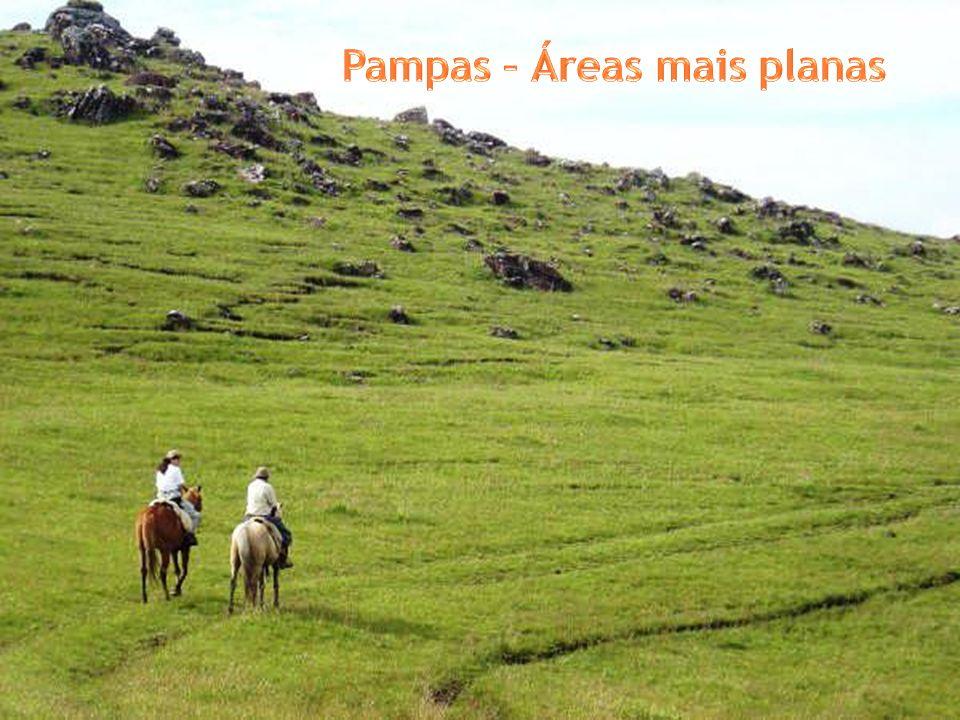 Pampas – Áreas mais planas