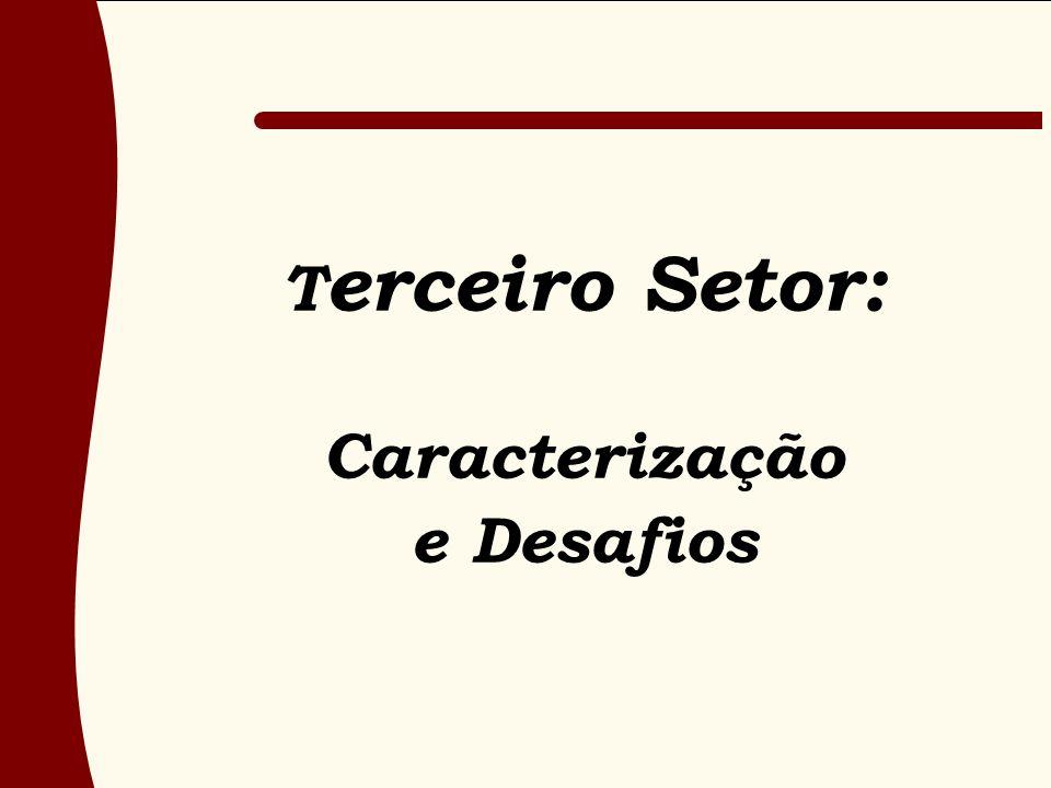 Terceiro Setor: Caracterização e Desafios