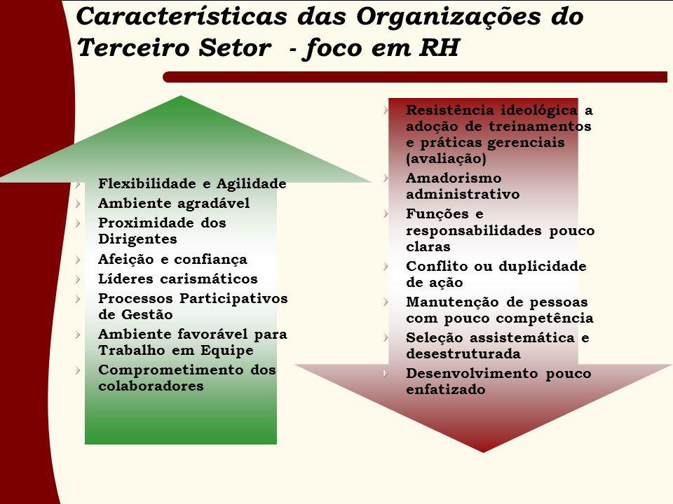 Características das Organizações do Terceiro Setor - foco em RH