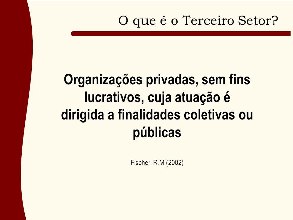 O que é o Terceiro Setor Organizações privadas, sem fins lucrativos, cuja atuação é dirigida a finalidades coletivas ou públicas.