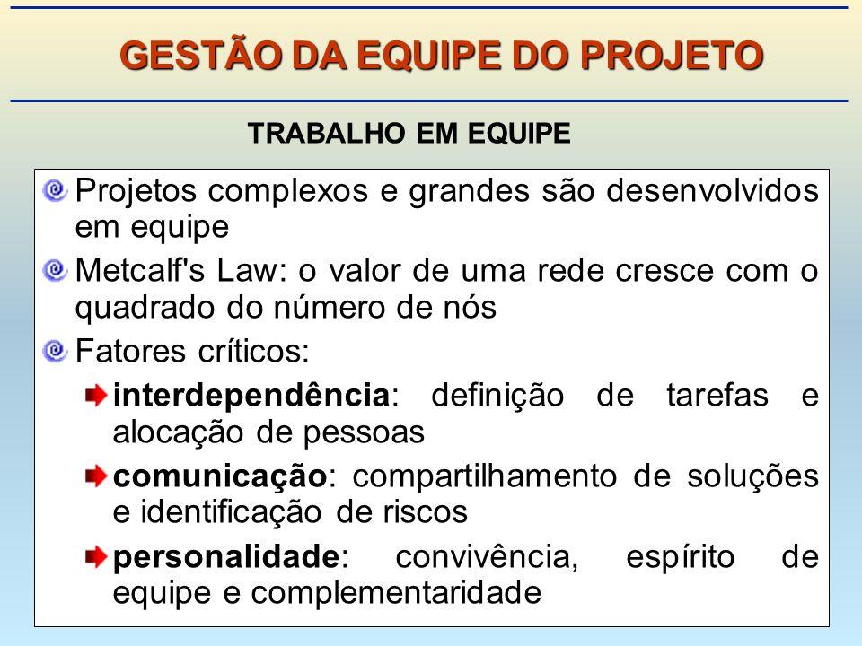 GESTÃO DA EQUIPE DO PROJETO
