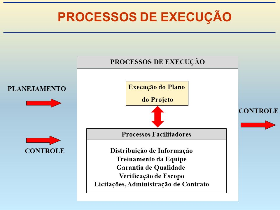 PROCESSOS DE EXECUÇÃO PROCESSOS DE EXECUÇÃO Execução do Plano